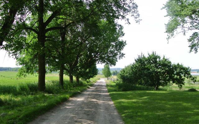Road Trip: Mr. Martin's Farm